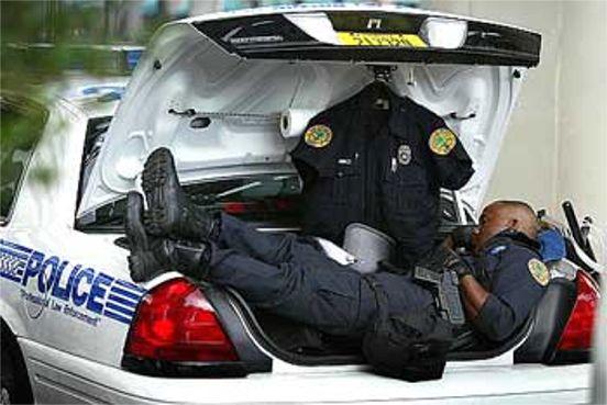 Cop Sleeping In Trunk Afrizap World