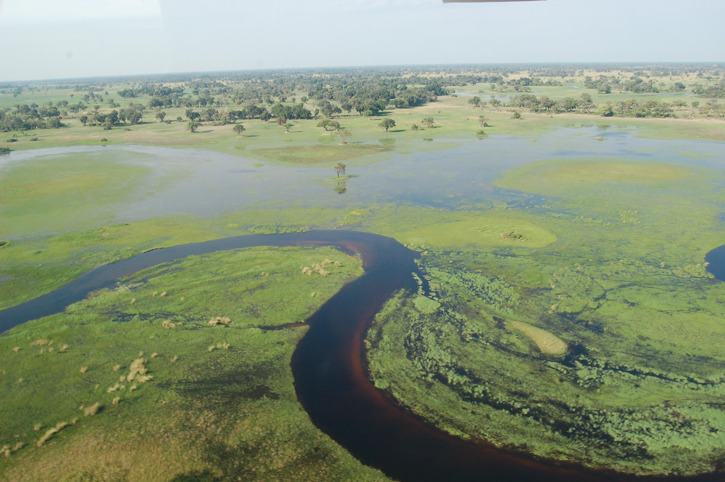 Lieu Afrique Okavango