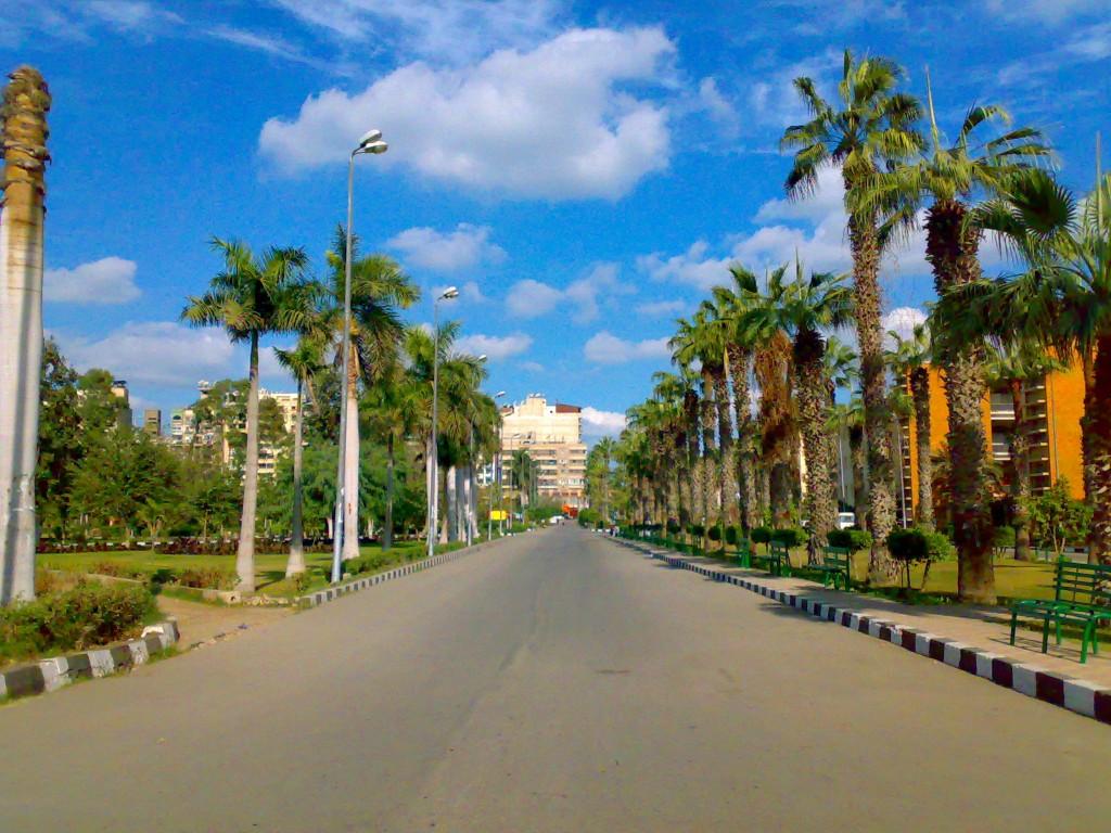 Mansoura_University_in_Dec_2007