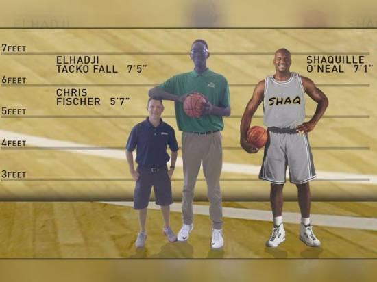 chaussures de séparation bd100 dc3ab Le sénégalais Tacko Fall, plus grand basketteur du monde ...