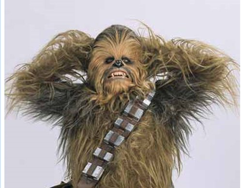 star-wars-chewbacca-window-stress